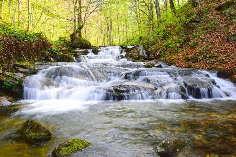 """A Água"" – Poema de Miguel Torga"