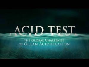 Teste de Acidez (documentário) – Acid Test