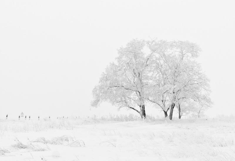 """Balada da Neve"" – Poema de Augusto Gil"
