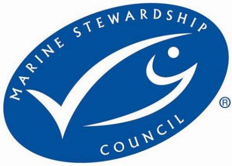 Primeira Pesca Portuguesa a Ganhar Certificação de Sustentabilidade MSC