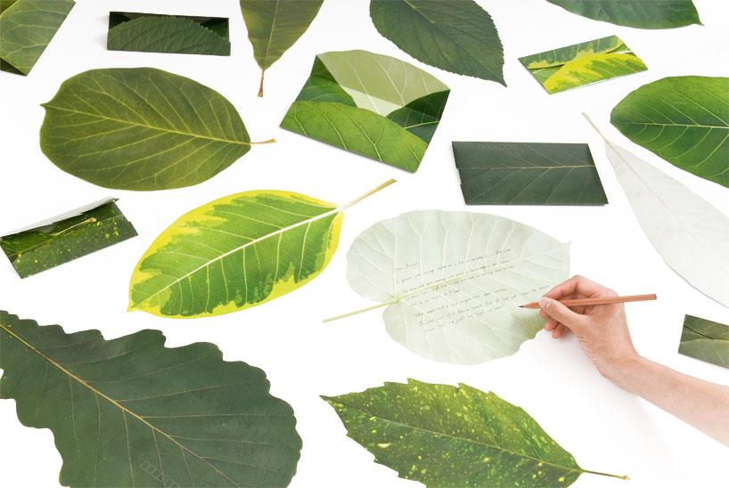"""""""Leaf Letter"""" – as Cartas Japonesas"""
