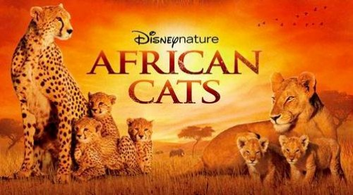 """African Cats"" (Disneynature) Documentário Ajuda a Salvar a Savana"