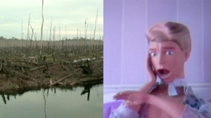 Barbie, Responsável pela Desflorestação na Indonésia