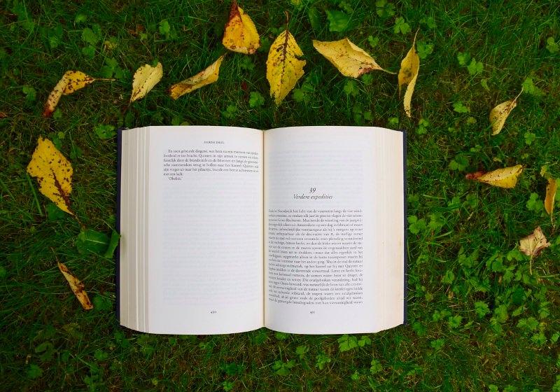 """""""As Árvores e os Livros"""" – Poema de Jorge Sousa Braga"""