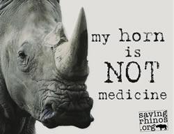 Ajude a Parar o Mercado Ilegal do Chifre de Rinoceronte!