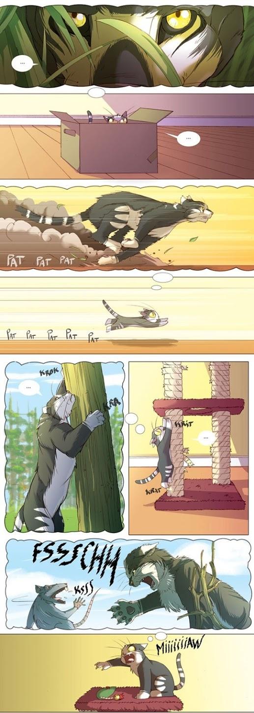 A Imaginação de um Gato – Cartoon