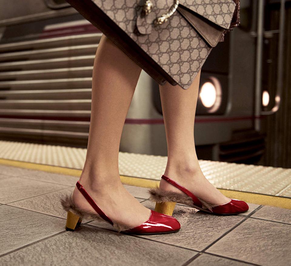Cangurus e os Sapatos da Gucci