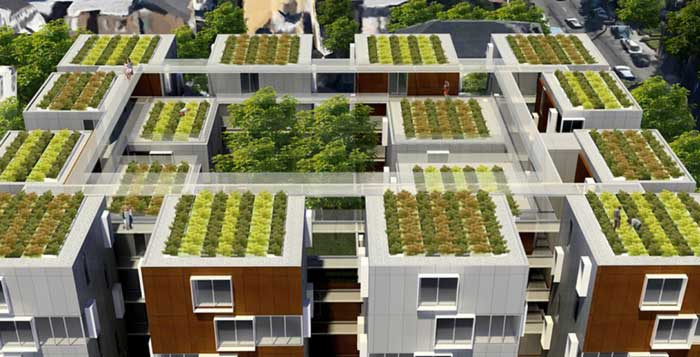 França – Novos Telhados Têm de Ser Cobertos com Plantas ou Painéis Solares