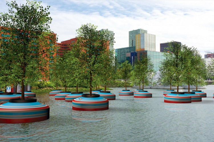 A Floresta Flutuante de Roterdão, na Holanda