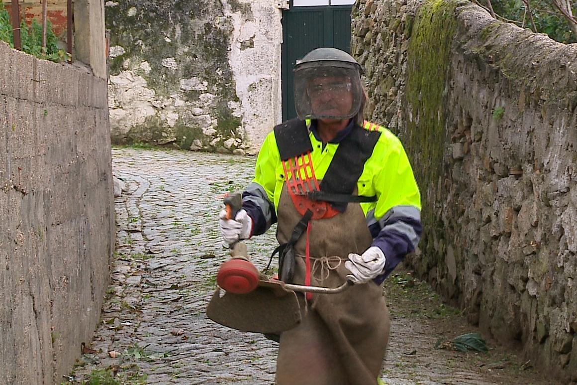 Câmara do Porto Deixou de Usar o Glifosato no Controlo das Ervas Daninhas da Cidade