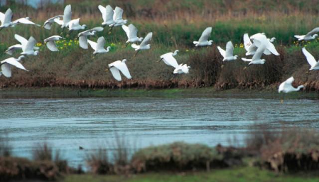Portugal Tem Duas Novas Reservas da Biosfera – UNESCO