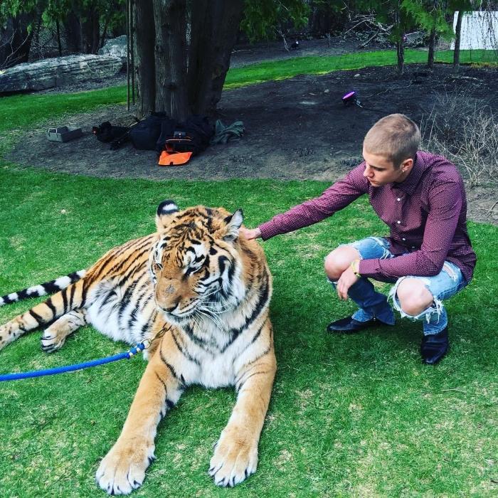 Justin Bieber e o Uso de Animais Selvagens como Atrações em Festas