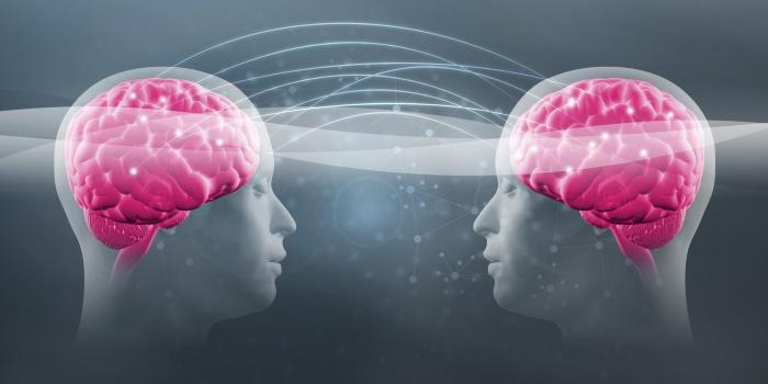Investigadora da Universidade de Lisboa Estuda a Transmissão do Pensamento à Distância