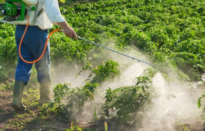 Está a Comer Herbicida da Monsanto ao Pequeno-almoço?