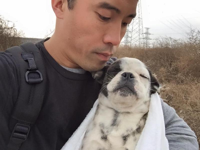 Marc Ching a resgatar um cão