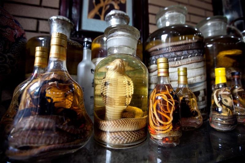 Vinho de Cobra e outros Souvenirs Exóticos a Evitar nas Férias