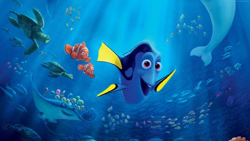 """Porque não Deve """"Procurar"""" Dory ou Nemo nas Lojas de Animais"""