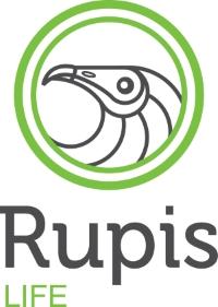 Logótipo do Rupis