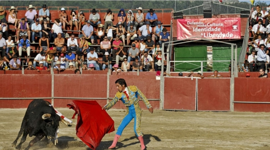 Este ano não vai haver tourada nas festas de Viana do Castelo