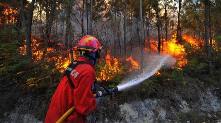 3 Bombeiros de Nice vieram voluntariamente combater incêndios em Portugal
