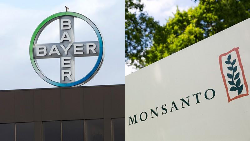 Bayer compra Monsanto por 60 mil milhões de euros