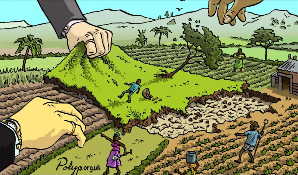 Land-grabbing ou a corrida mundial pela apropriação de terras férteis