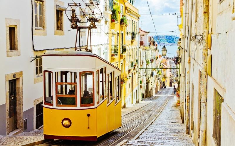 Lisboa quer ser a 1ª cidade sem desperdício alimentar