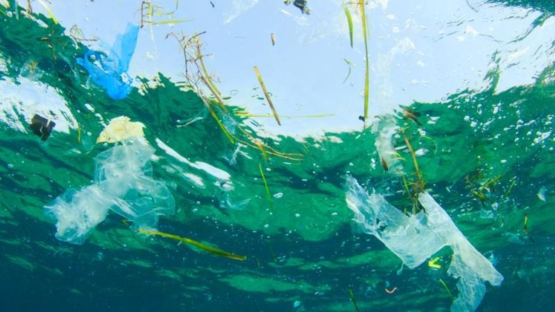 O fundo do mar também está coberto de plástico, revela estudo