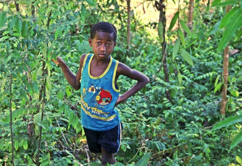 20 mil crianças trabalham em Madagáscar para produzir a baunilha dos nossos bolos e gelados