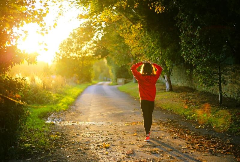 Passeio de 50 minutos na natureza melhora saúde mental, memória e reduz risco de depressão, diz estudo
