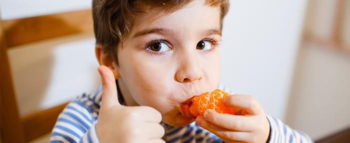 Vitória! Aprovada lei para a inclusão da opção vegetariana em todas as cantinas públicas