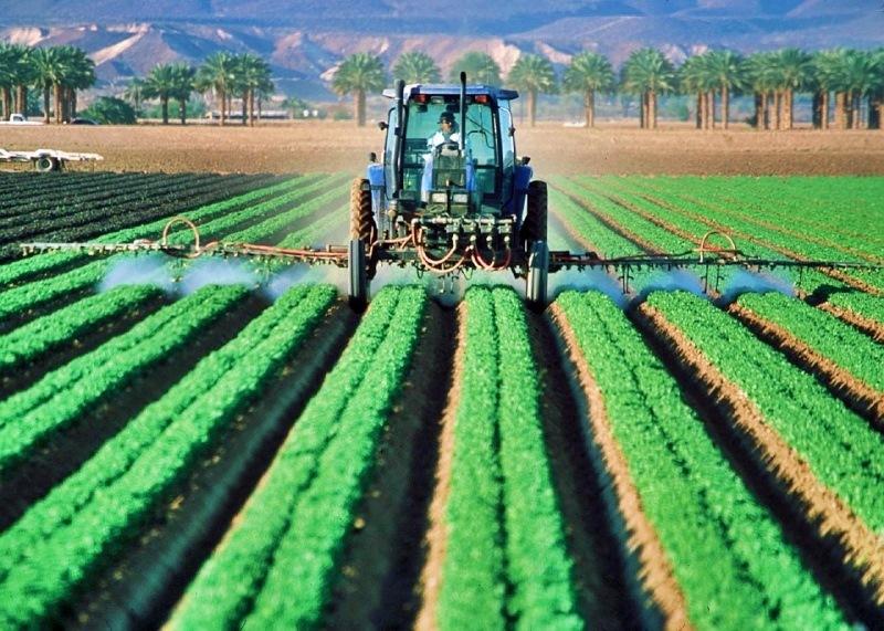 Agricultores poderiam reduzir significativamente uso de pesticidas sem prejuízos, revela estudo