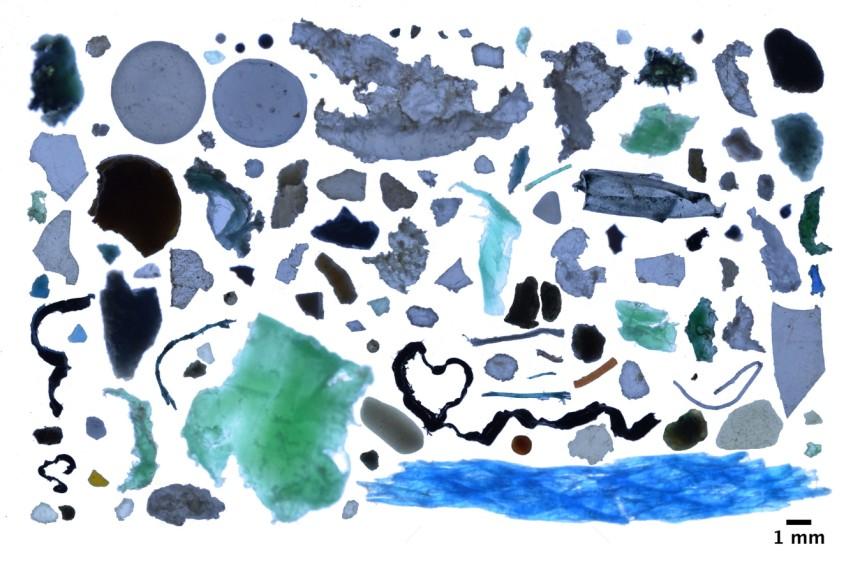 Há 300 mil milhões de peças de plástico a poluir as águas do Ártico, revela estudo