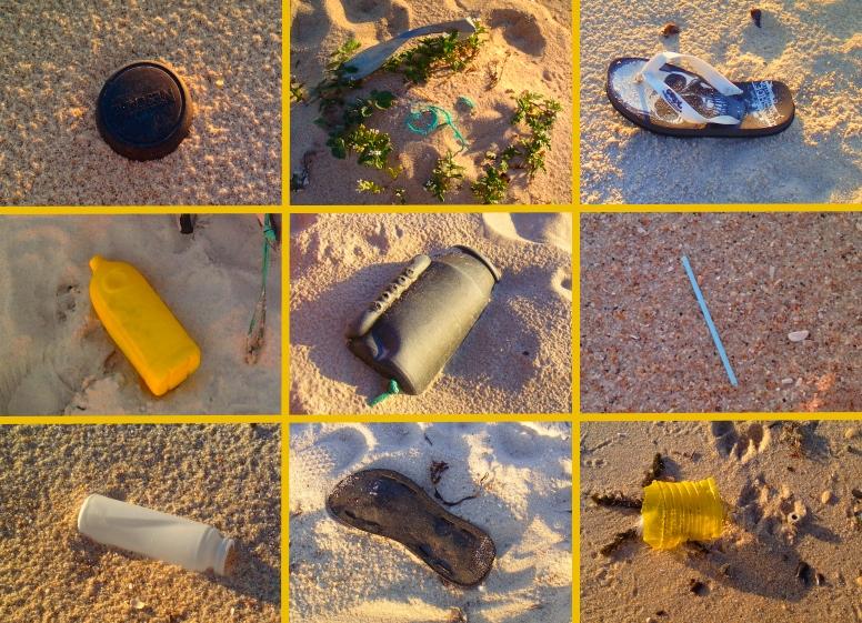 O UniPlanet limpou uma praia