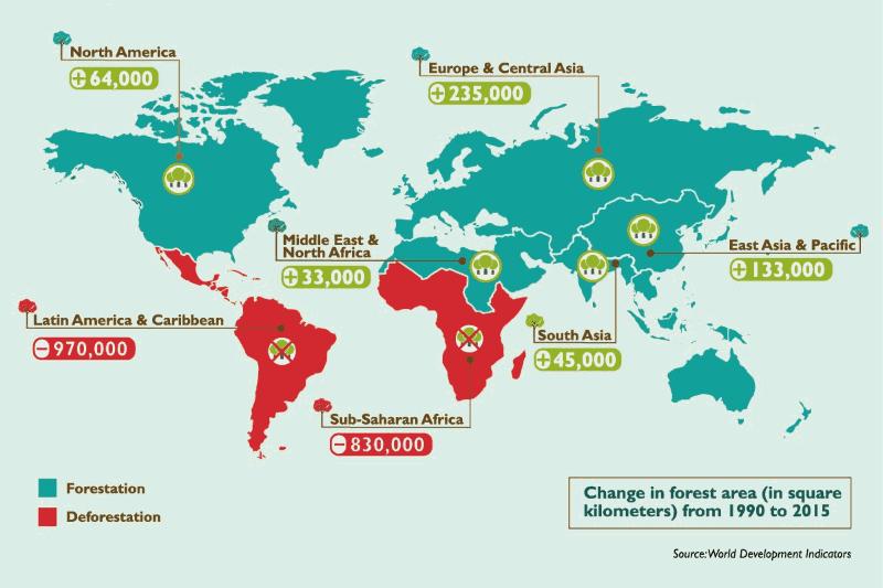 Que países perderam e ganharam mais árvores desde 1990?