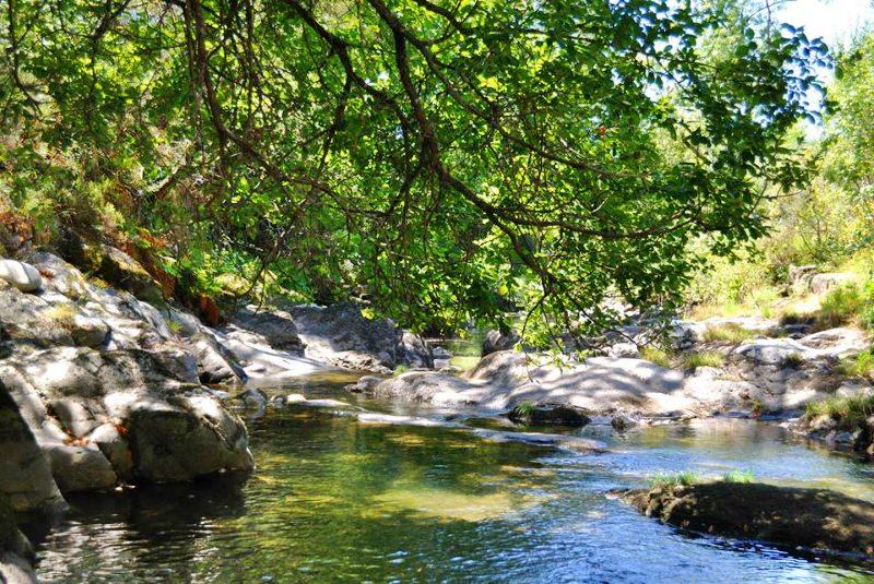 Reconhecer os Direitos da Natureza em Portugal
