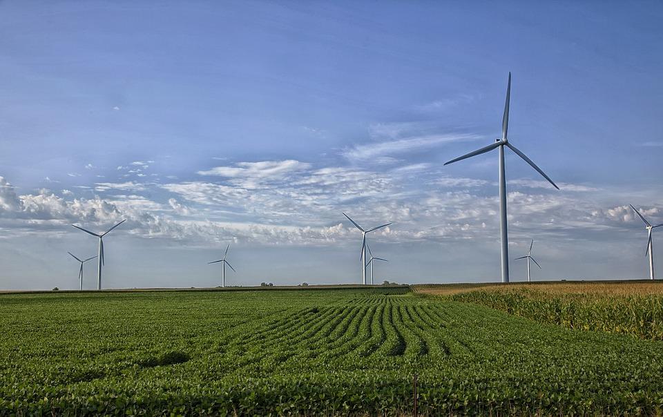 Portugal é o 4º maior produtor de energia eólica da UE