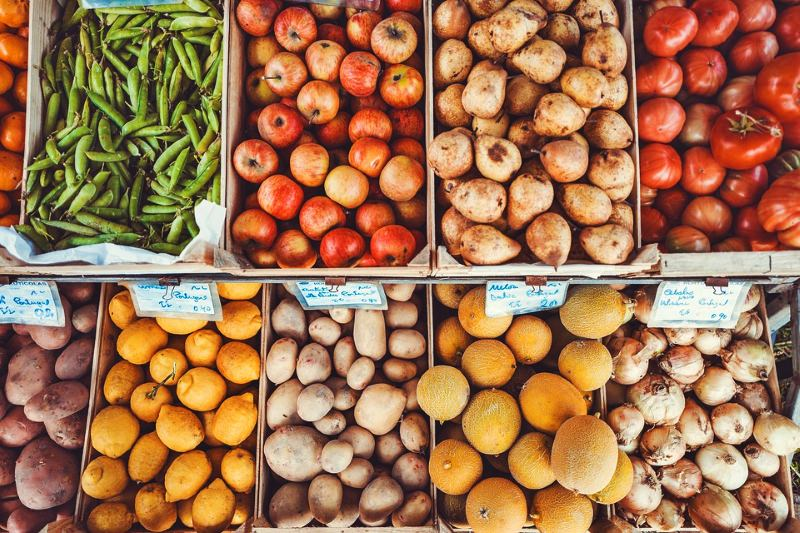 Pesticidas podem causar danos no cérebro, diz estudo da UE que recomenda alimentos biológicos