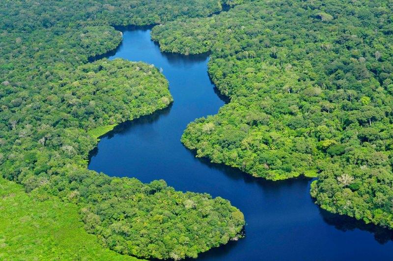 """Barragens na bacia do Amazonas poderão causar danos """"profundos"""" na natureza, diz estudo"""