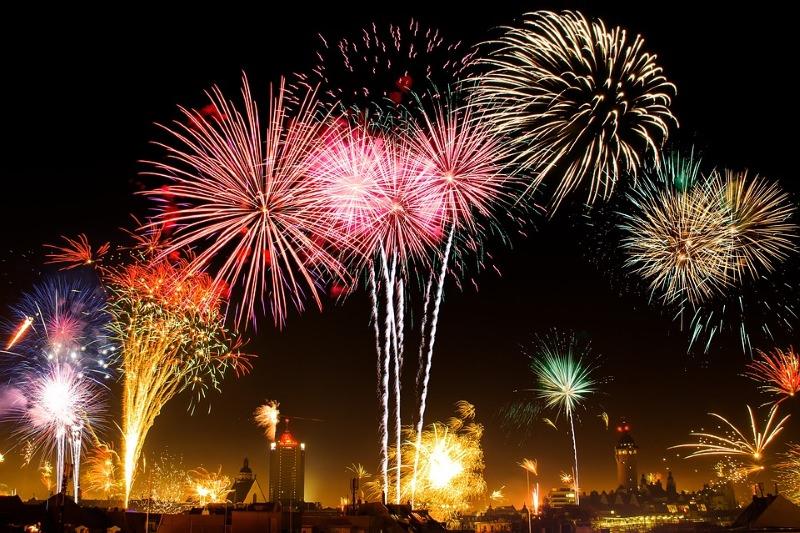 Aves fogem em massa dos fogos de artifício, revela estudo