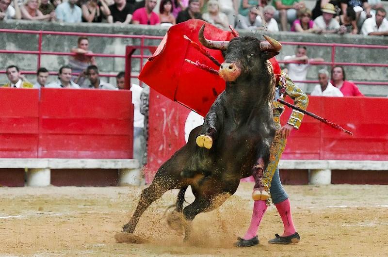"""Ilhas Baleares encontram maneira criativa de """"proibir"""" as touradas"""