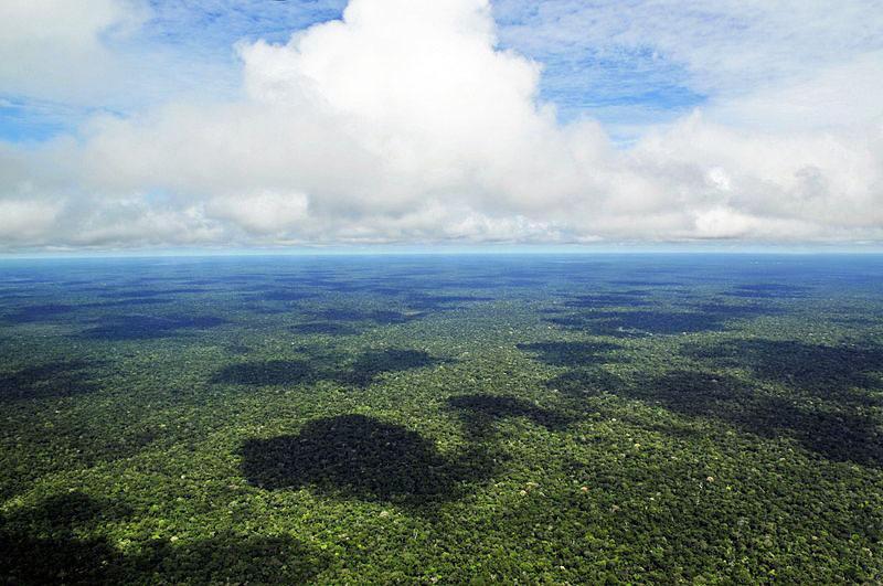 Juiz suspendeu decreto de Temer que extinguia reserva natural na Amazónia