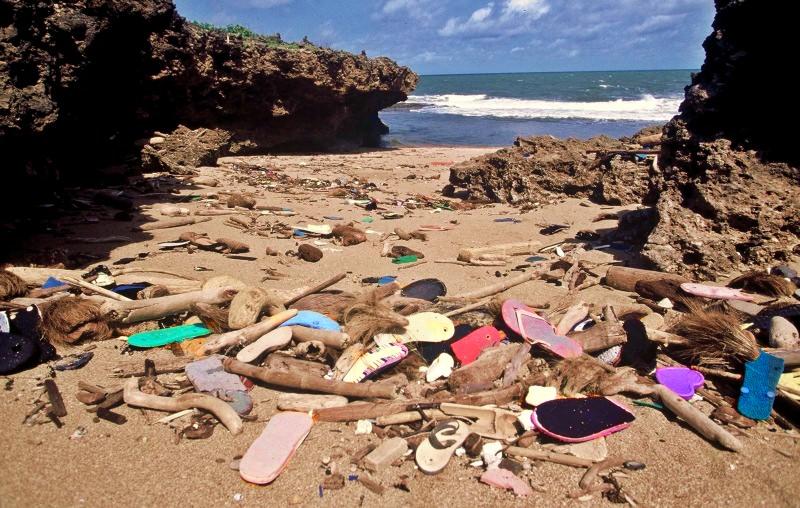 Milhões de chinelos usados vão parar ao mar, onde poluem e ameaçam a vida marinha