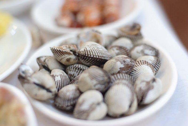 Berbigão e lambujinha alimentam-se de fibras de plástico no estuário do Tejo