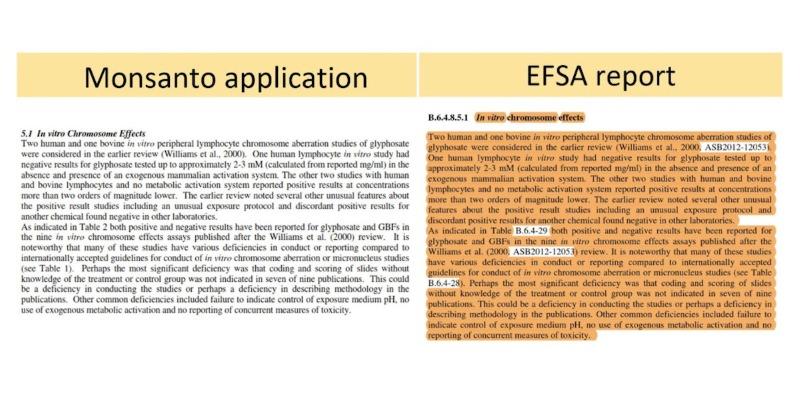 Relatório da UE sobre segurança do glifosato copiou texto da Monsanto