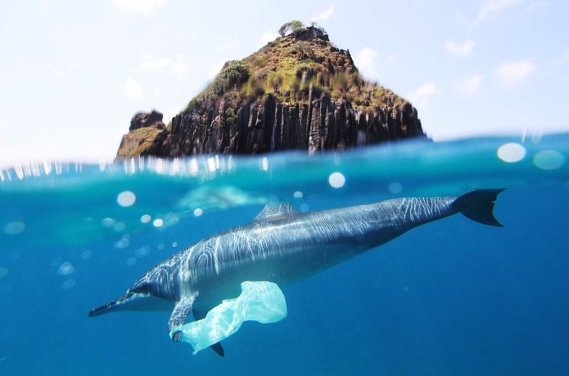Chile vai proibir sacos de plástico em mais de 100 municípios costeiros