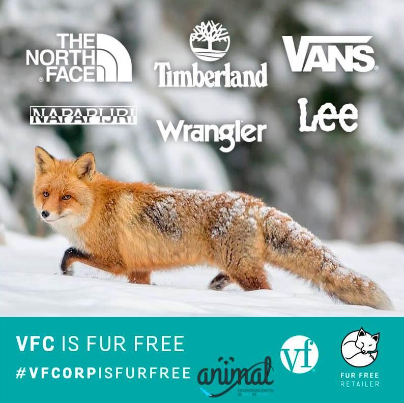 """VF Corporation não vai voltar a usar pelo, angorá ou """"couro exótico"""""""