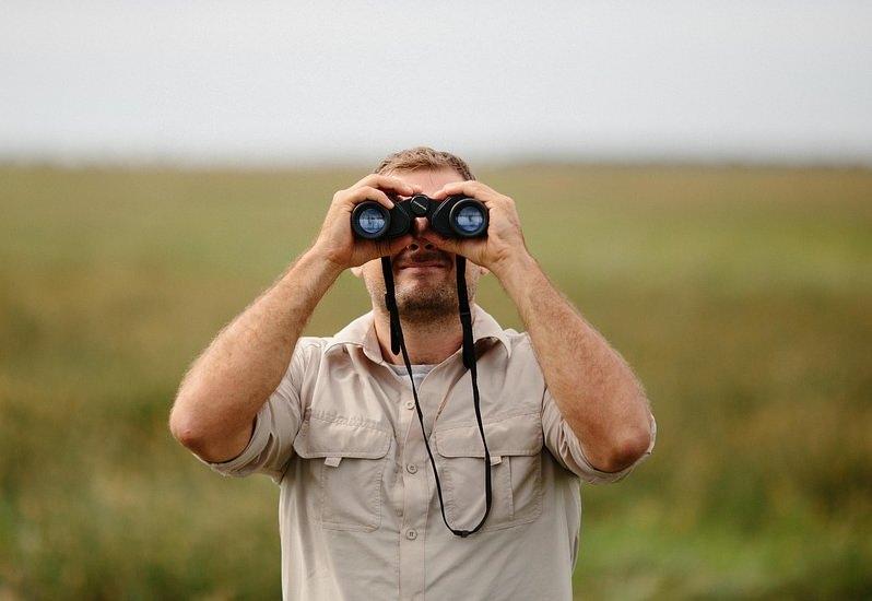 Há 30 vagas para Vigilante da Natureza