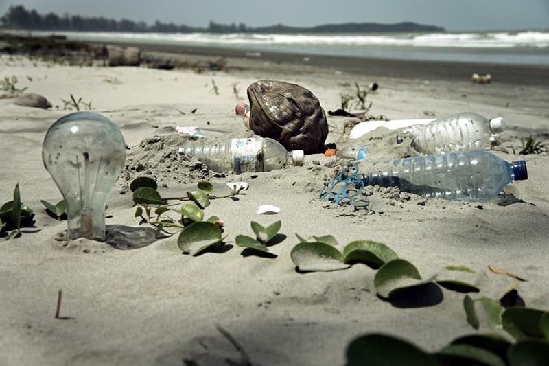 Participem na limpeza da Praia da Fonte da Telha, em Almada