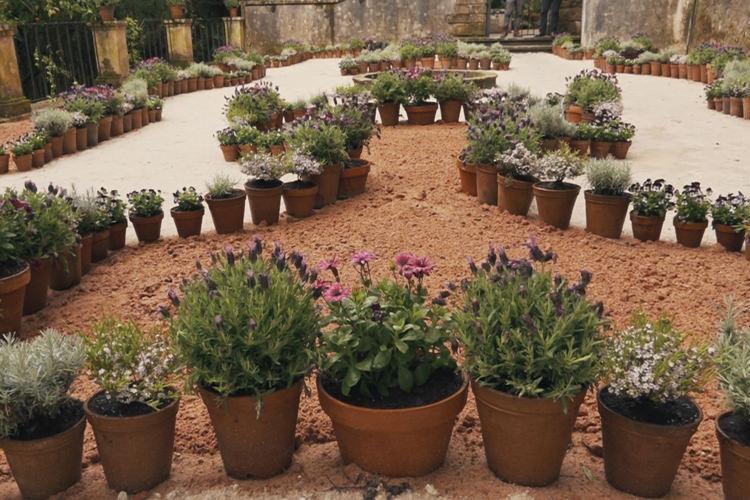 Da Roma antiga para o Jardim Botânico de Coimbra: Casa dos Narcisos